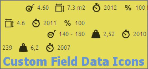 custom-field-data-icons